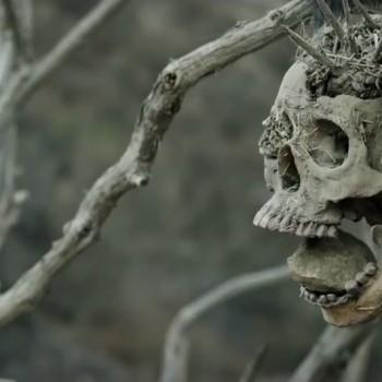 Bone Tomahawk ~ Review