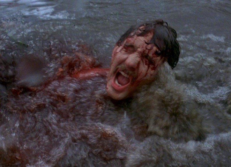 piranha-1978-bloody-1024×578